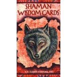 Shaman Wisdom Cards By Leita Richesson