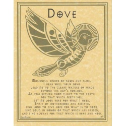 Dove Prayer Poster