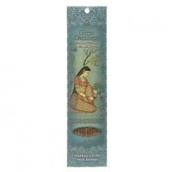 Ragini Padmanjari Incense Stick 10 Pack
