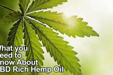Is CBD for you?